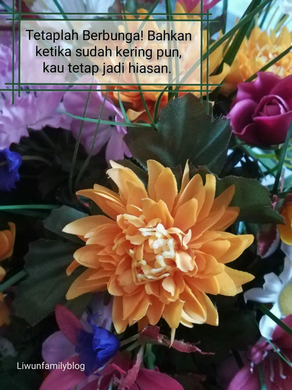 Tetaplah Indah Dan Berguna Meski Kelak Kau Hanya Bunga Kering Make It In Your Life